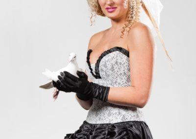 biele postove holuby,