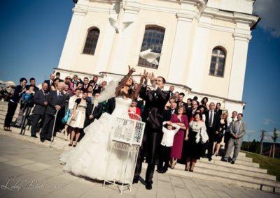 holuby na vypustenie po svadbe